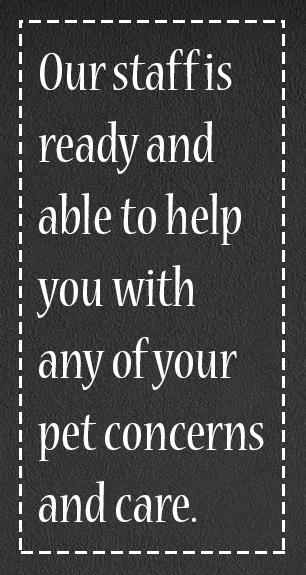 Pet Concerns